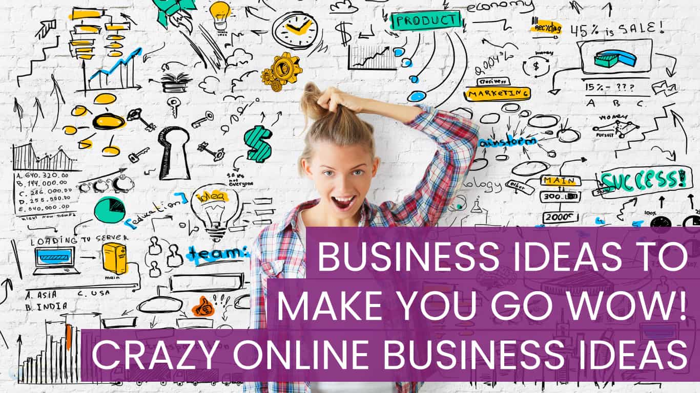 Business Ideas to make you go WOW! Crazy Online Business Ideas