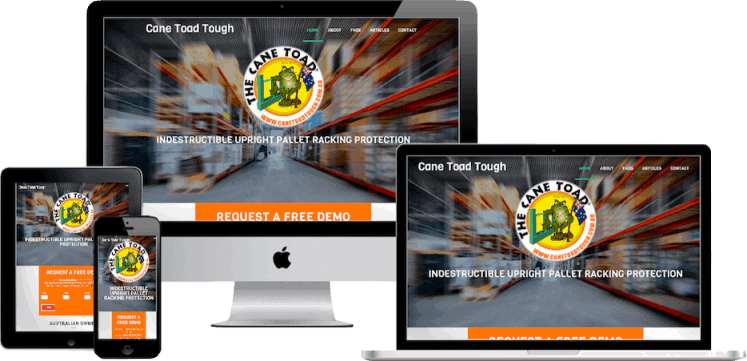 Brisbane Web Design for Cane Toad Tough