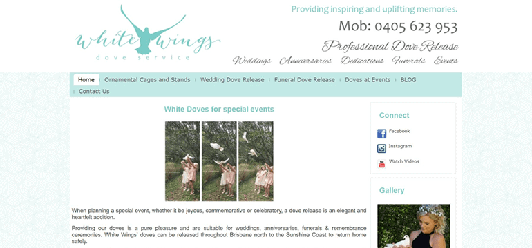 Mobile Responsive WordPress Website Design